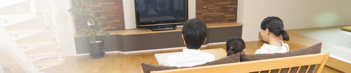テレビ・ラジオCM/新聞・その他媒体広告