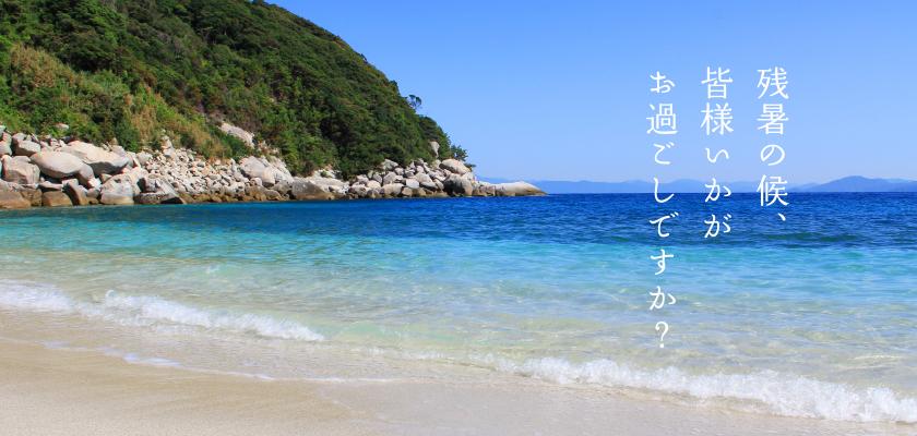 summer_dm